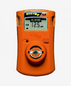 Popular Model - BW GasAlertQuattro Multi Gas Detector